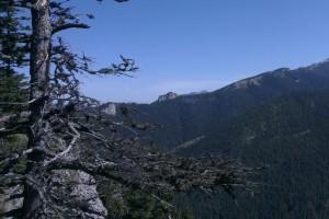 Pohľad z Holice na Ostrý a Sivý vrch