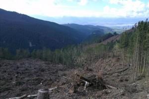 Pohľad z Holých Žiarov do Liptovskej kotliny