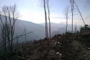 Výhľad do Suchej doliny
