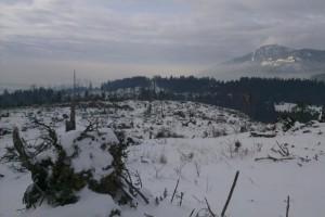 Pohľad od Kolembáčov na Meštrovú