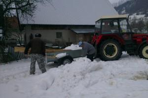 Pracovníci pri nakladaní snehu na vlečku, použitého na naplnenie snehovej jamy slúžiacej pre dočasné uskladnenie sadeníc