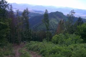 Ťažba suchárov – pohľad z vrchu Sielnickej hory