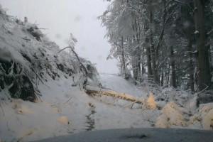 Škody spojené s príchodom prvého ťažkého snehu