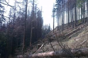 Spracovanie suchárov vo Valachovej nohavici