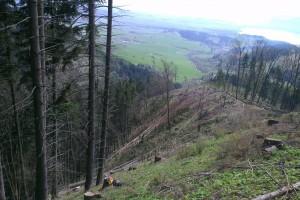Spracovanie suchárov na hrebeni v Sestrči