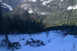 Aj v Sestrči množstvo snehu zastavilo ťažbovú činnosť